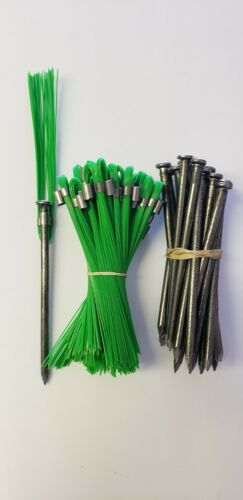 Survey Markers Green 6 Inch Whiskers with 60D Nail Ground Stakes