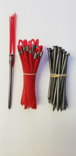 Survey Markers Red 6 Inch Whiskers with 60D Nail Ground Stakes