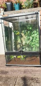 Frog tank enclosure