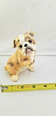 Very Cute Bully, English Bulldog Resin Figurine, Discounted For Quick Sale