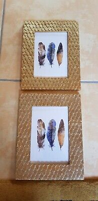 2 Bilderrahmen Fotorahmen Gold Federn 16x20,5cm Neu (Bilderrahmen 20 X 16)