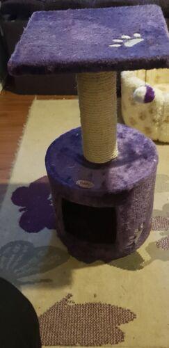 Purple  Cat Scratcher