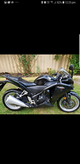 Honda Cbr250r 2011 Bunbury Bunbury Area Preview