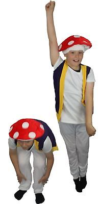 The Dragons Den Childrens Power up Mushroom Fancy Dress Costume Age 8-12 for sale  Shipping to Ireland