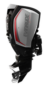 Evinrude Etec SALE Limited Stock