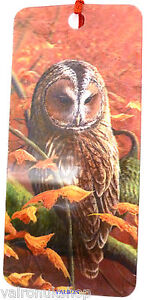 TAWNY-OWL-DESIGN-3D-HOLOGRAPHIC-BOOKMARK-WITH-SILK-TASSEL