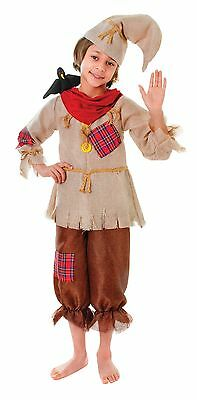 Kids Scarecrow Wizard Of Oz Film TV Halloween Book Week Age 5 - 11 Fancy Dress