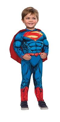 Toddler Superman Muscle Costume (Superman Muscle Chest Toddler 2T Halloween Costume)
