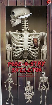 Halloween 5 ft (60 inch) Tall Pose-N-Stay Skeleton NIB - 5ft Skeleton