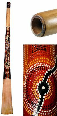 Didgeridoo Teak 51 inch painted repaired 20% off
