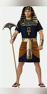 Egyptian Pharaoh Adult mens Halloween Costume
