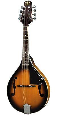 Купить Rogue RM-100A A-Style Mandolin Sunburst
