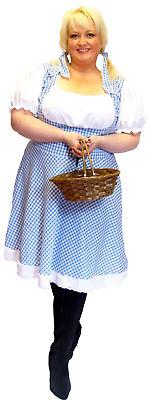 Wiz of OZ Dorothy PLUS SIZE'S Sexy Fancy Dress Costume ()