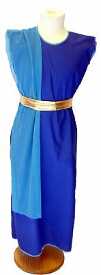 World Book Day EGYPTIAN/GREEK/ROMAN Slave/Hand Maiden Costume - All - Slave Girl Costume