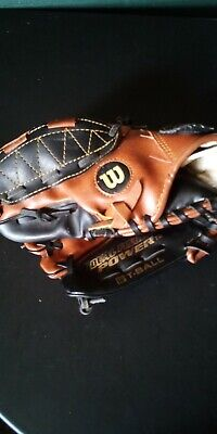 Wilson EZ Catch T-Ball Right Hand Throw , Custom FIT , 10