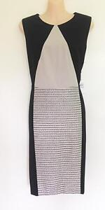 Calvin klien Office Party Dress size 12 NWT - free post Glenfield Campbelltown Area Preview