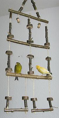 Vogelnetz Vogelschaukel 3-stöckig , Nymphensittich- und Wellensittich