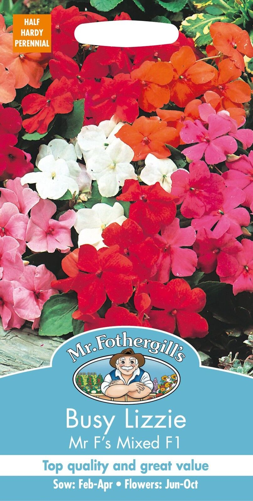 Flower Mr Fothergills Busy Lizzie Mr.F/'s Mixed F1-40 Seeds