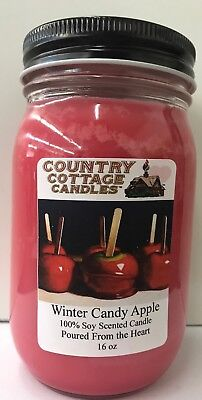 16 oz Soy Candle Winter Candy Apple.Bath & Body Works FREE SHIPPING ()