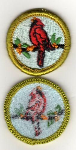 Bird Study Merit Badge, Type H, Blue Back Version (1972 - 1975), Mint!