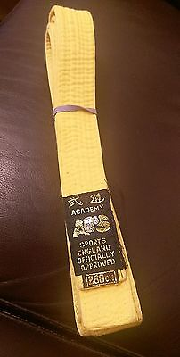 Used, Karate/Taekwondo yellow belt 280cm for sale  Shipping to South Africa