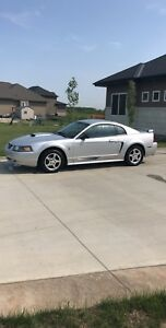 2003 Ford Mustang Leather No accidents