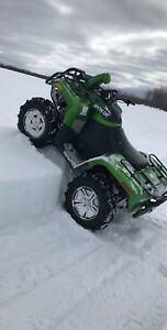 2010 arctic cat