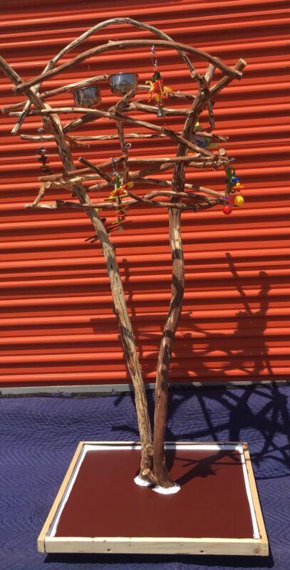 Small Bird Perch Tree