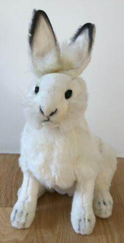 Hansa Rabbit — White Hare