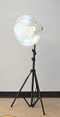 Photography Light FL-360 With Raven RS10 10' Aluminum Stand
