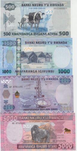 Rwanda Banknote P38-41 (2008-14) Full Set 500-1000-2000-5000 Francs, 4 val. UNC