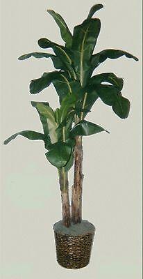 8' BANANA PALM ARTIFICIAL SILK TREE PLANT BASKET ARRANGEMENT FLOWER TOPIARY DATE (Artificial Banana Tree)