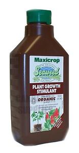 MAXICROP PLANT GROWTH STIMULANT - ORIGINAL ORGANIC SEAWEED EXTRACT - 500ML