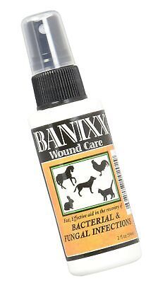 Banixx Dog/Cat Ear Infection, Hot Spot & Ringworm Treatment, Itchy Skin Relie... Dog Hot Spot Treatment