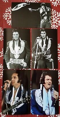 Elvis Presley 9 Photo Set 1975 Navy Blue Jumpsuit W/Silver Phoenix FREE CD - $7.29