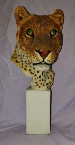 "8 3/4"" Tall Cheetah Bust 2003 Spring Realistic"