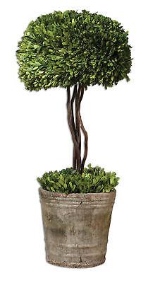 Classic Topiary Mini Tree Pot | Preserved Boxwood Greenery Braided Trunk -
