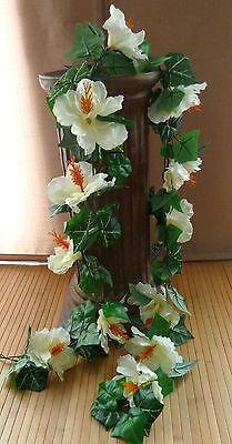170 cm  Hibiskus Girlande  creme (Hibiskus-girlande)