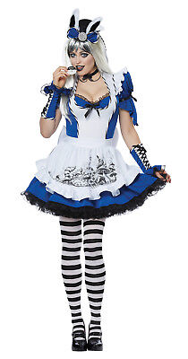 Mad Alice in Wonderland Adult Women Costume