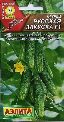 Cucumber - RUSSIAN SNACK F1. Russian Seeds ](Cucumber Snack)