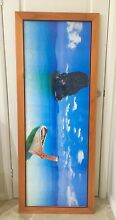 Framed picture beach Chifley Eastern Suburbs Preview