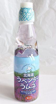Lavender Flavored Ramune Soda Refreshing Herbal Fragrance from Hokkaido Japan
