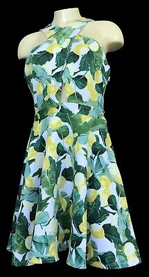 Womens ABERCROMBIE & FITCH Multicolor Lemon Sleeveless Stretch Dress Size L NWT