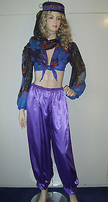 Fancy Dress Arabian Nights (LADIES ARABIAN NIGHTS GENIE PRINCESS JASMINE FANCY DRESS BELLY DANCER 12-14)