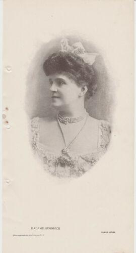 1906 Marcella Sembrich 6x12 Vintage Printed Photo of Grand Opera Star