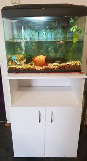 70LT 2FT FISH TANK & STAND /COMP SET UP