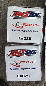 Amsoil oil filters for 3.1L V6 GM