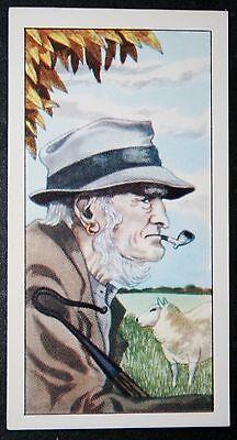 SHEPHERD     English Country Scene    Colour Card  # VGC