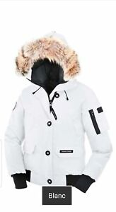 Canada goose baby its cold outside!