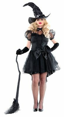 Woman Witch Halloween Costumes (Women's Halloween Costumes Cobweb Witch Dress With Hat, Black, Small)